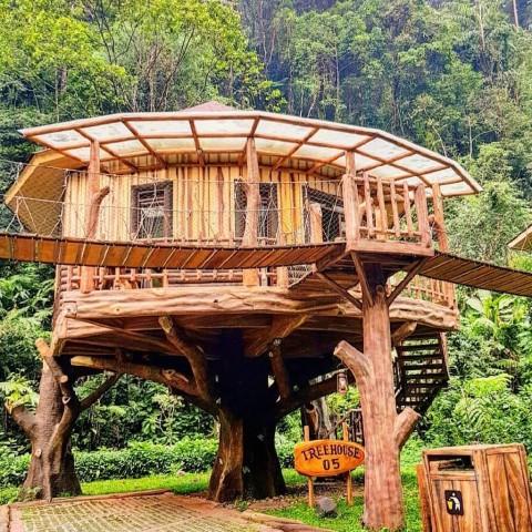 Rumah Pohon Safari Lodge