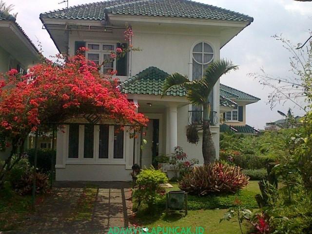 Villa Gede